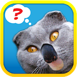 Download Download 1 Pic Combo: What's the Thing? APK For Android 2021
